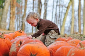 Pumpkin patches are a perfect fall adventure for kids of all ages!
