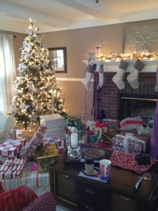 Just a few weeks ago my house was filled with Christmas decorations and laughing children. How the time flies!